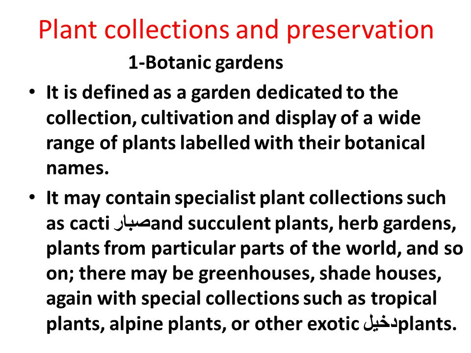 Plant collections and preservation
