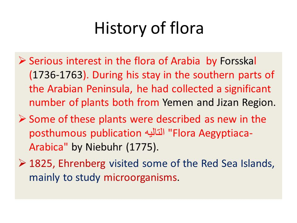 History of flora