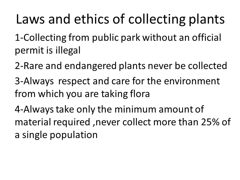 Laws and ethics of collecting plants