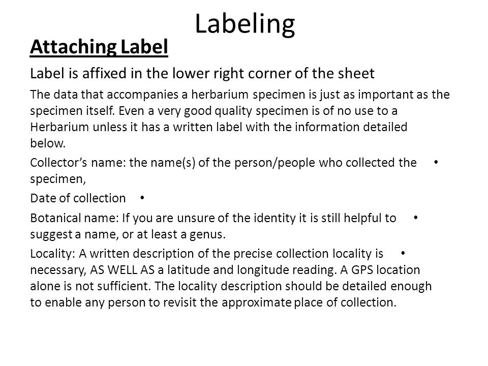 Labeling Attaching Label