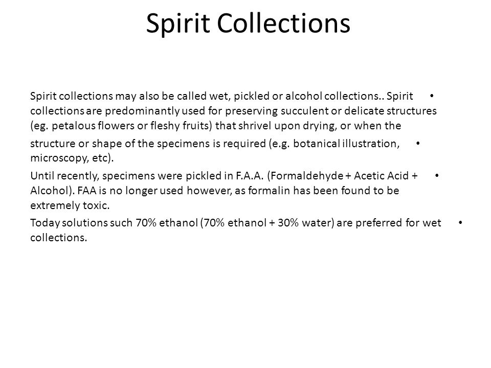 Spirit Collections