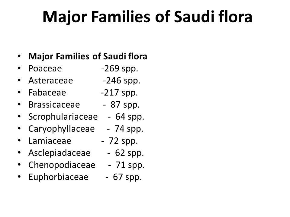 Major Families of Saudi flora