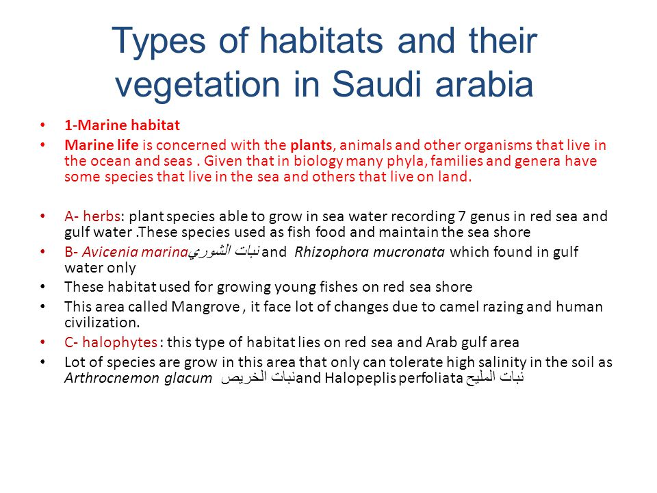 Types of habitats and their vegetation in Saudi arabia
