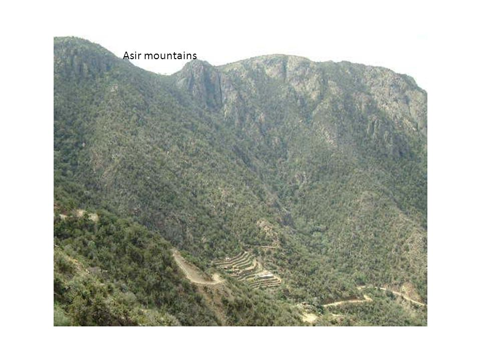 Asir mountains
