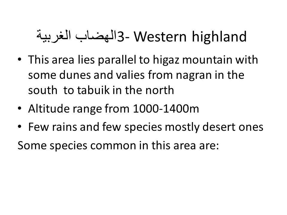 3- Western highland الهضاب الغربية
