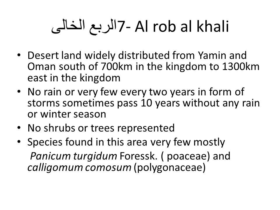 7- Al rob al khali الربع الخالى