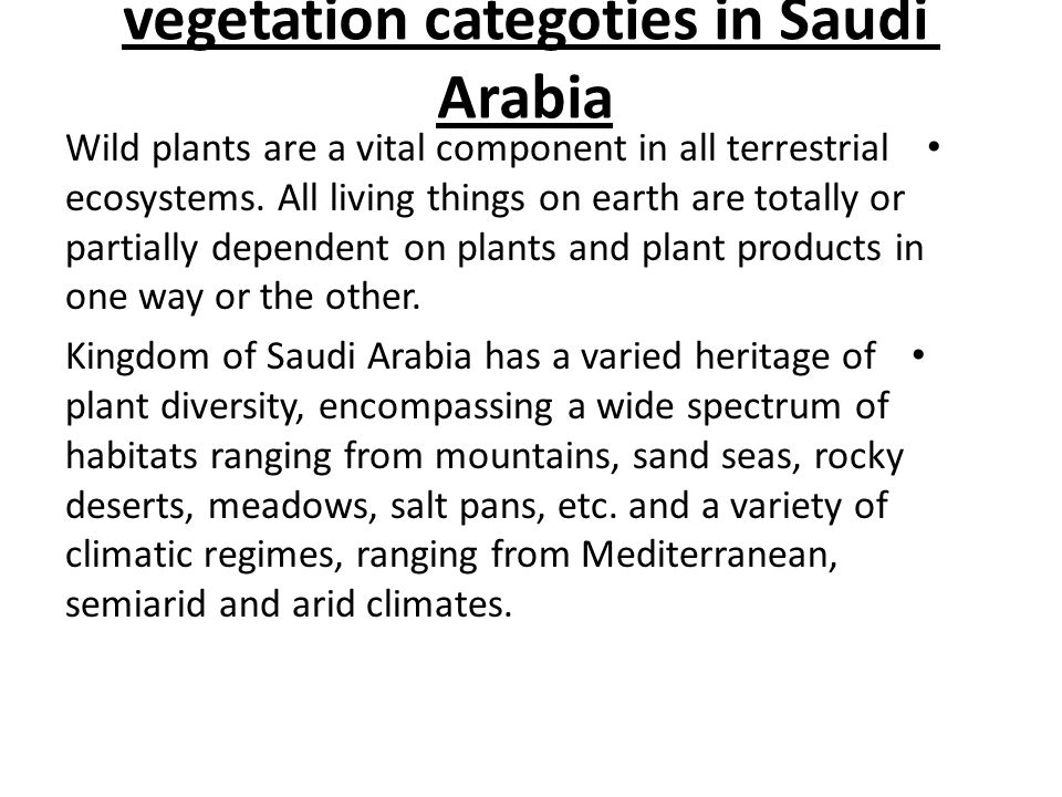 vegetation categoties in Saudi Arabia