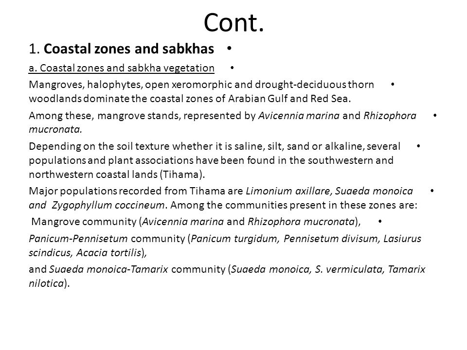 Cont. 1. Coastal zones and sabkhas
