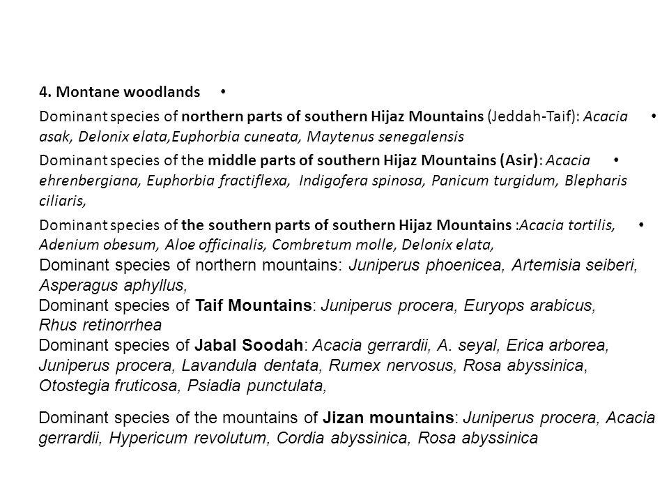 4. Montane woodlands