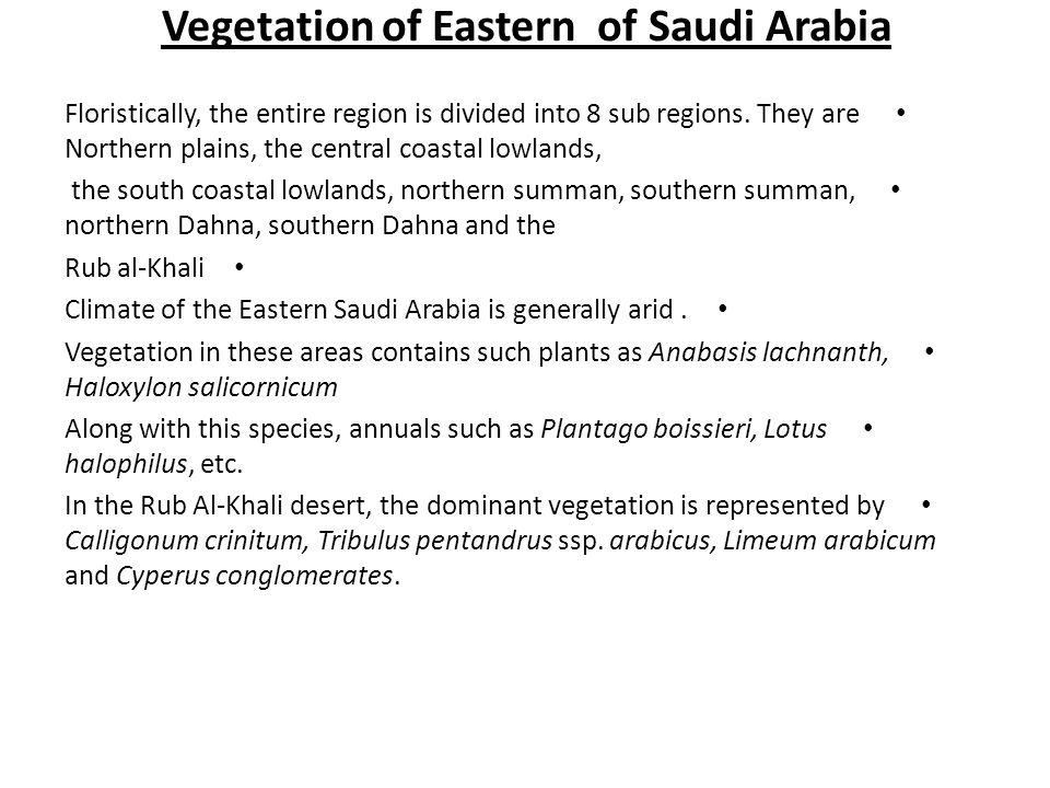 Vegetation of Eastern of Saudi Arabia