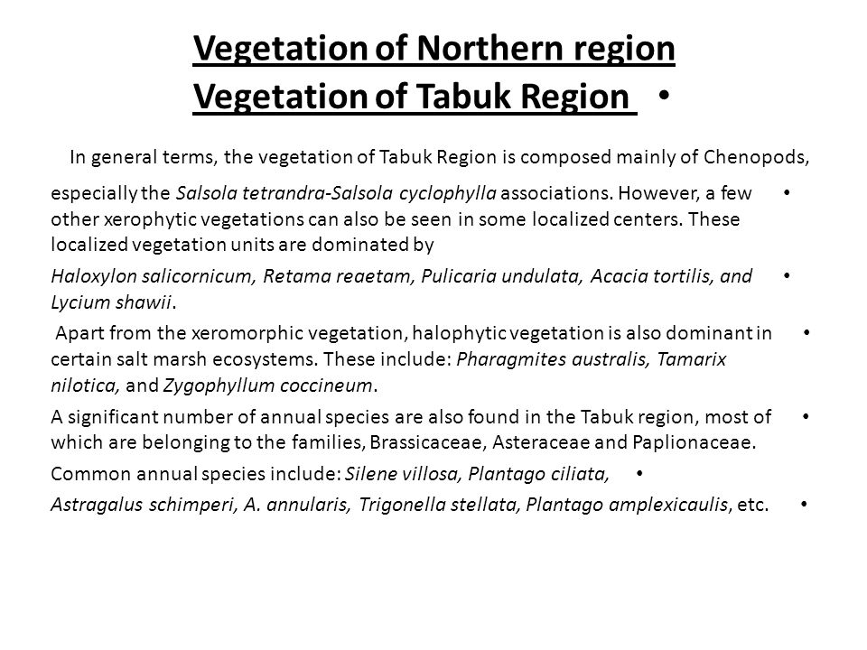 Vegetation of Northern region