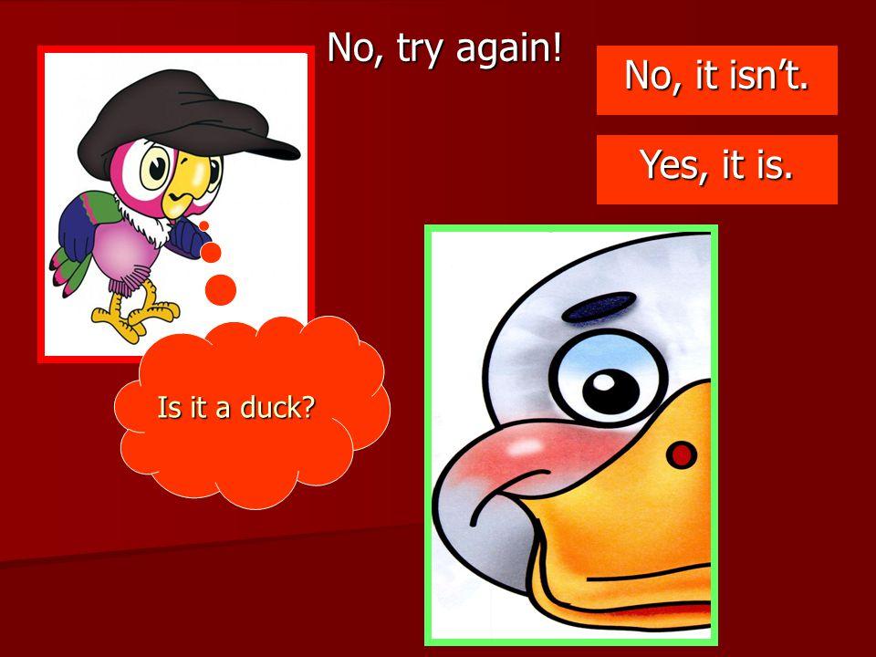 No, try again! No, it isn't. Yes, it is. Is it a duck