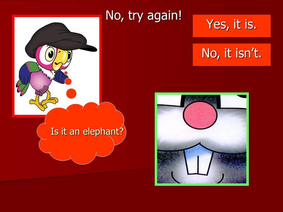 No, try again! Yes, it is. No, it isn't. Is it an elephant