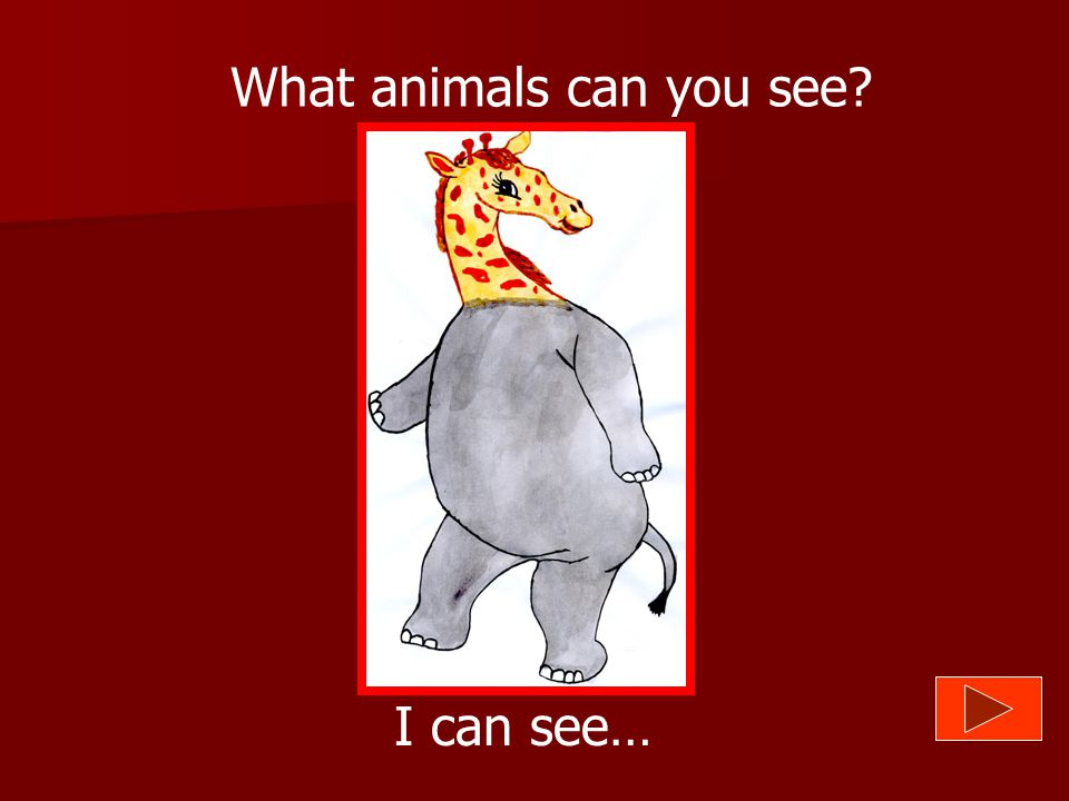 What animals can you see