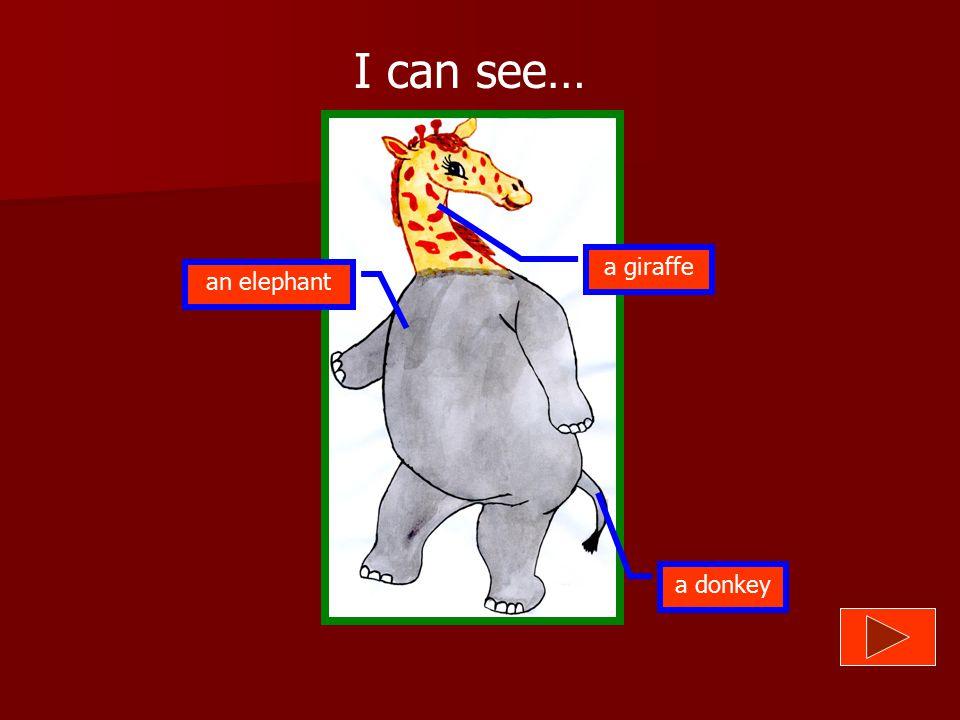 I can see… a giraffe an elephant a donkey