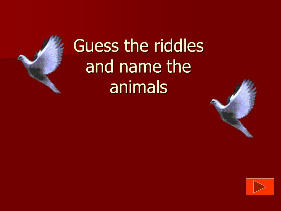 Guess the riddles and name the animals