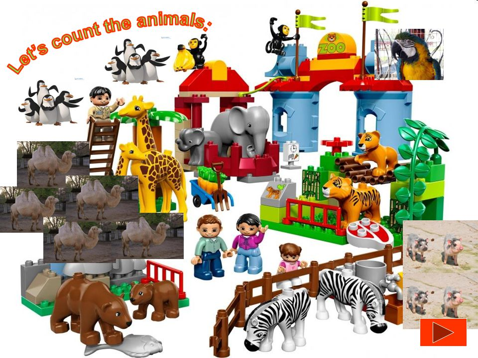 Let's count the animals:
