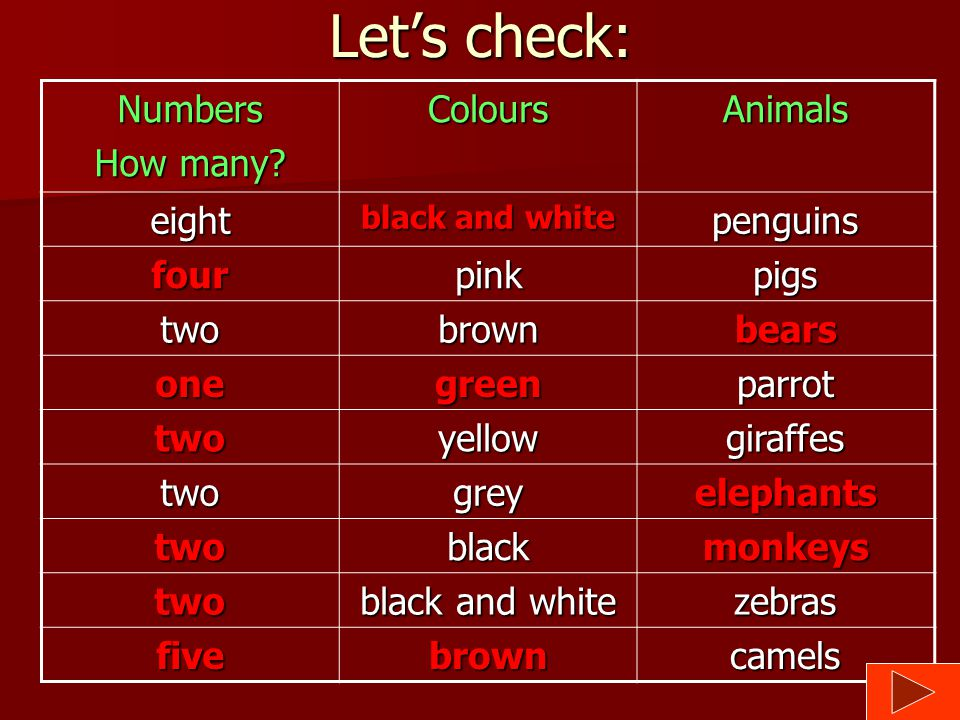 Let's check: Numbers How many Colours Animals eight penguins four