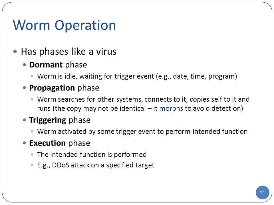 Worm Operation Has phases like a virus Dormant phase Propagation phase