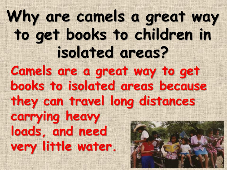 Why are camels a great way to get books to children in isolated areas