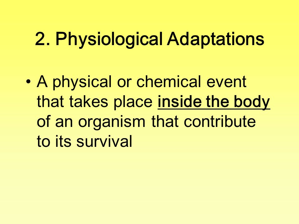 2. Physiological Adaptations