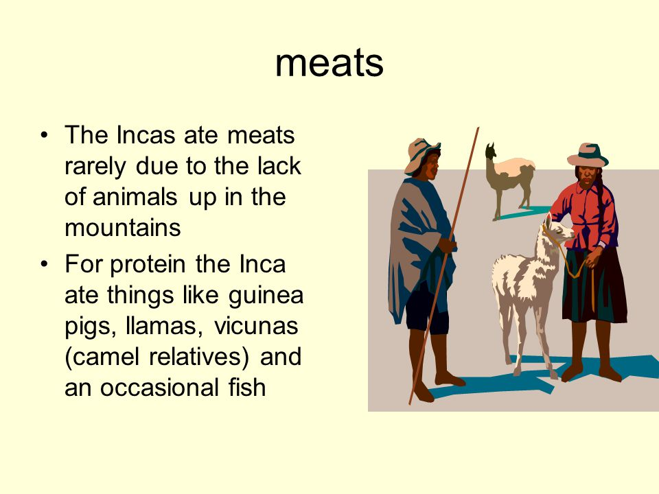 meats The Incas ate meats rarely due to the lack of animals up in the mountains.