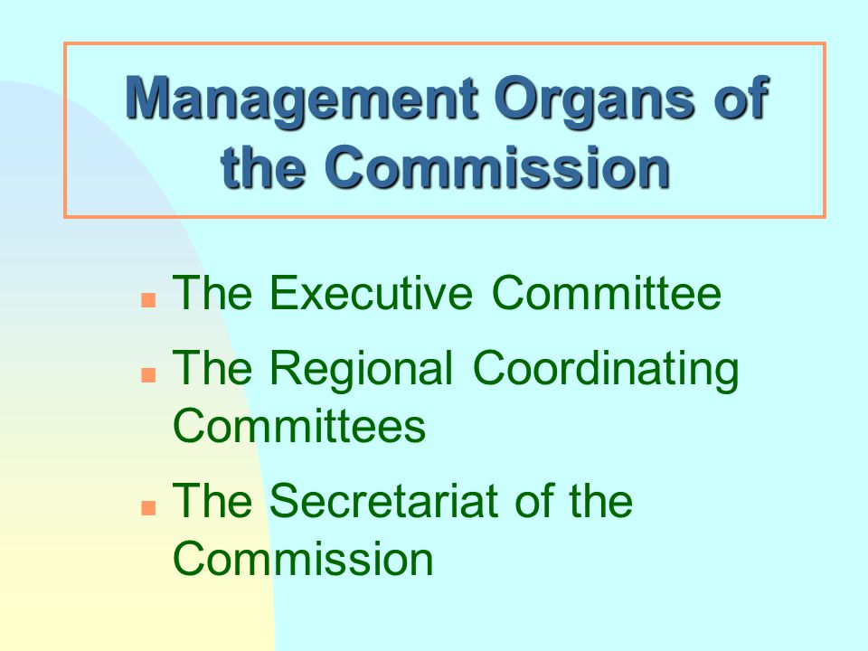 Management Organs of the Commission