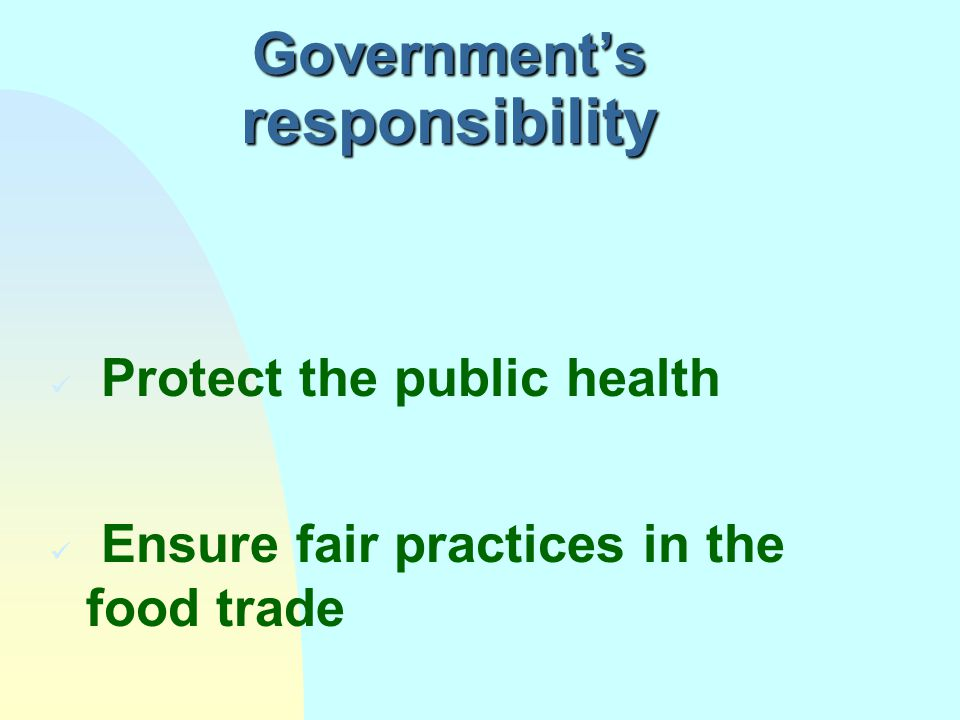 Government's responsibility