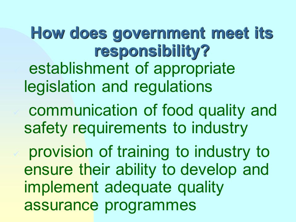 How does government meet its responsibility