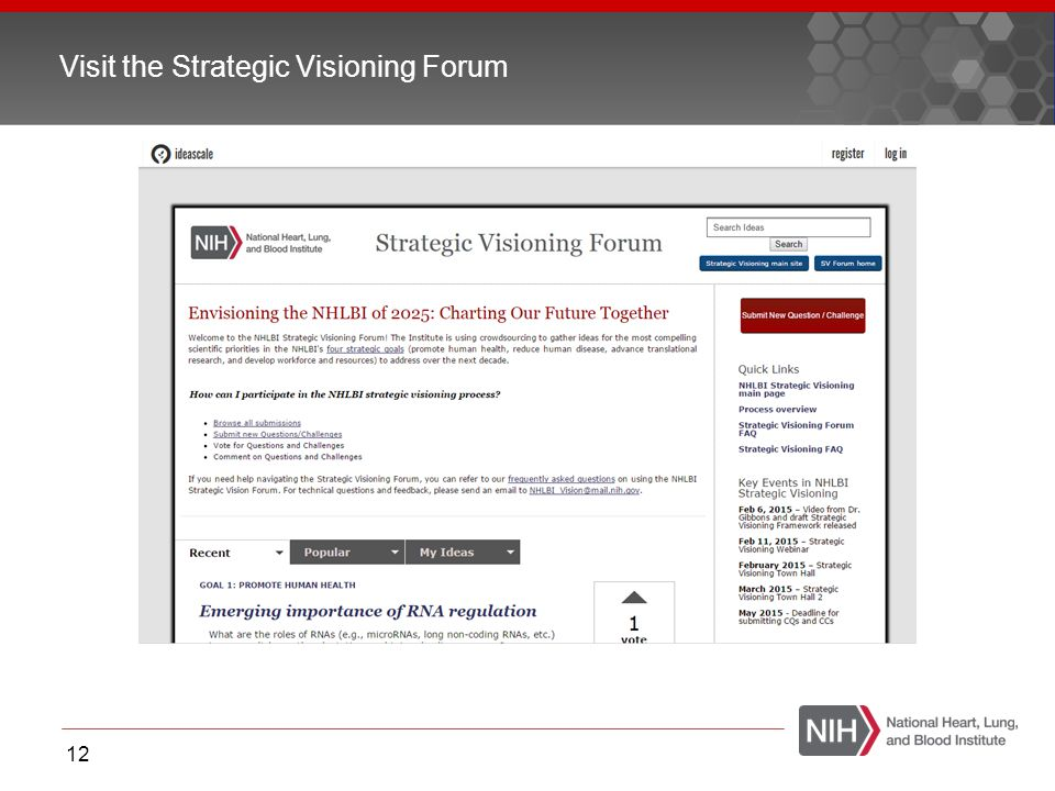 Visit the Strategic Visioning Forum