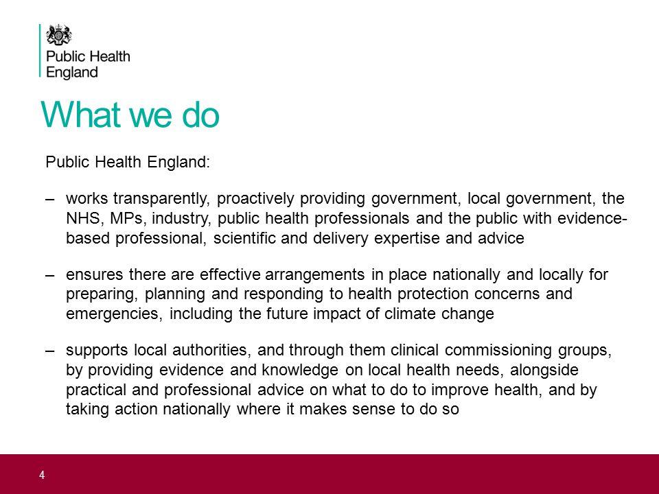 What we do Public Health England: