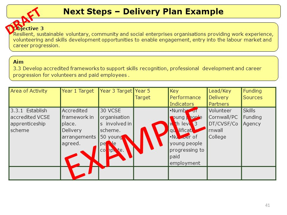 Next Steps – Delivery Plan Example