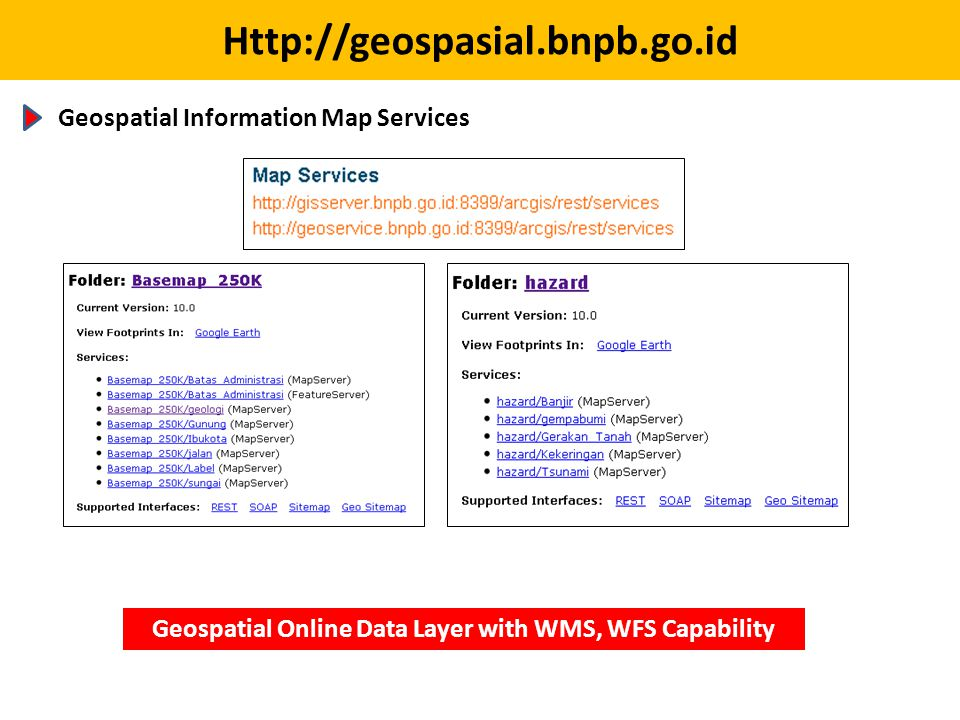 Geospatial Online Data Layer with WMS, WFS Capability