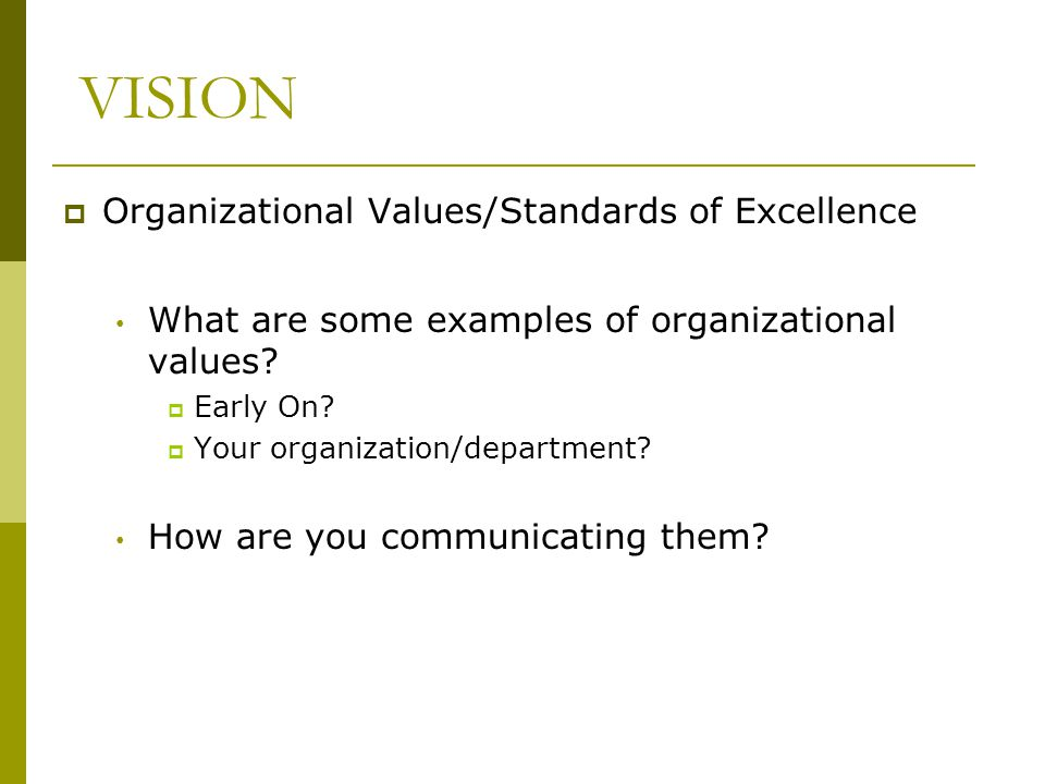 VISION Organizational Values/Standards of Excellence