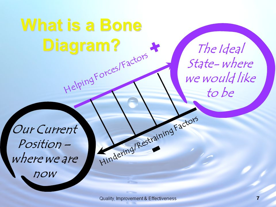 What is a Bone Diagram The Ideal State- where we would like to be