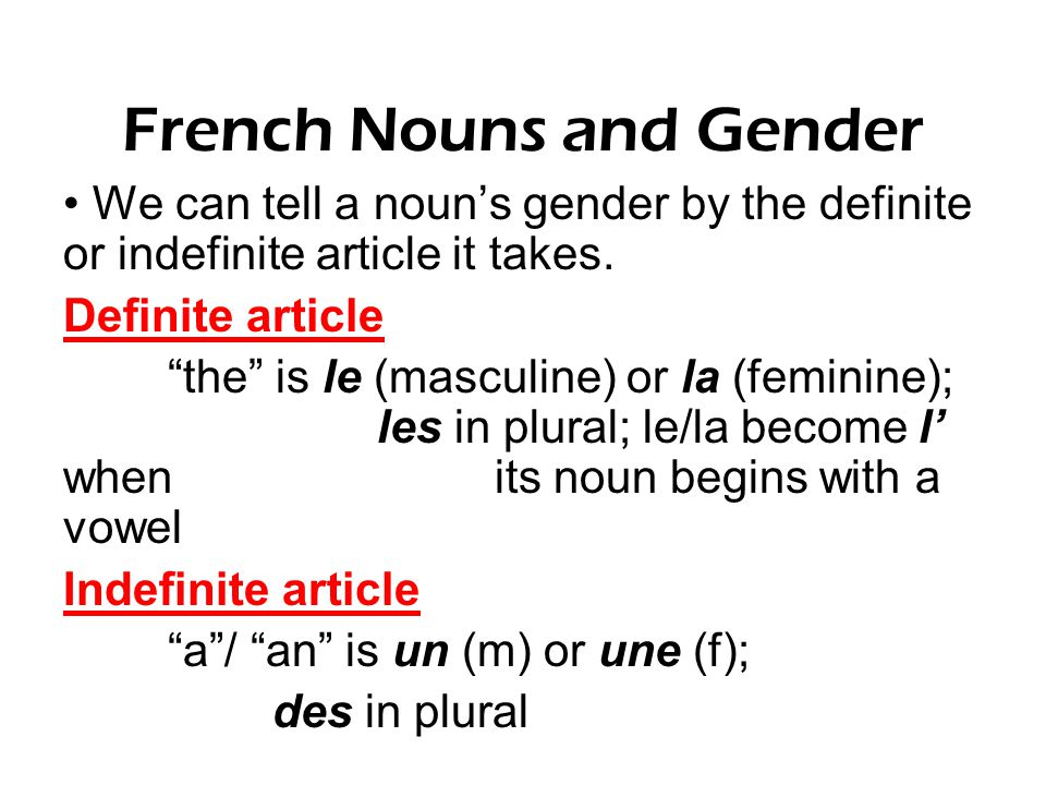 French Nouns and Gender