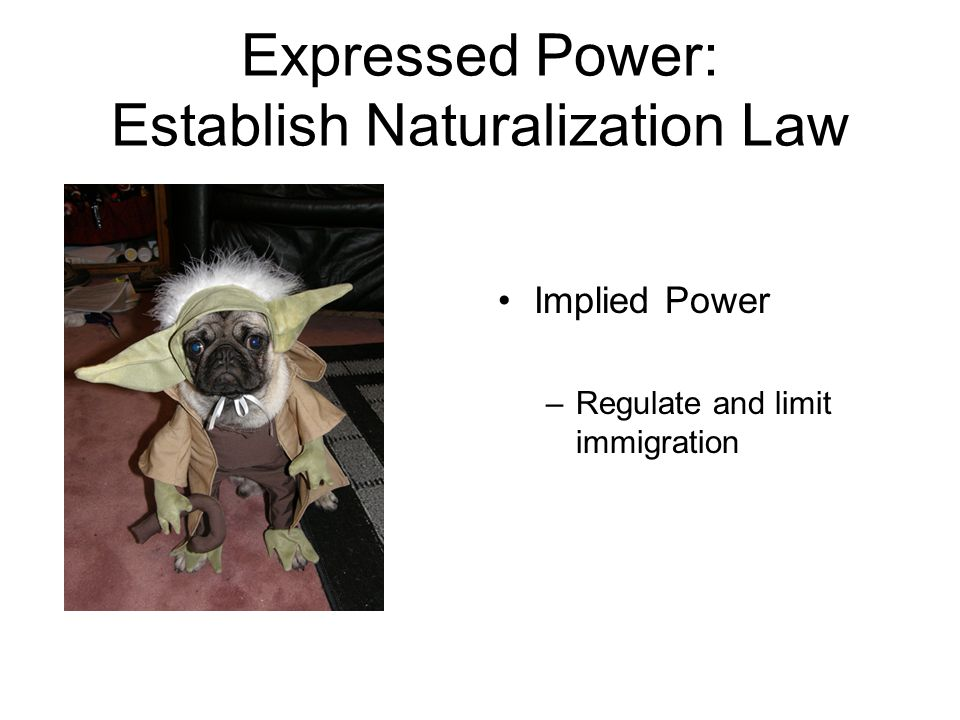 Expressed Power: Establish Naturalization Law