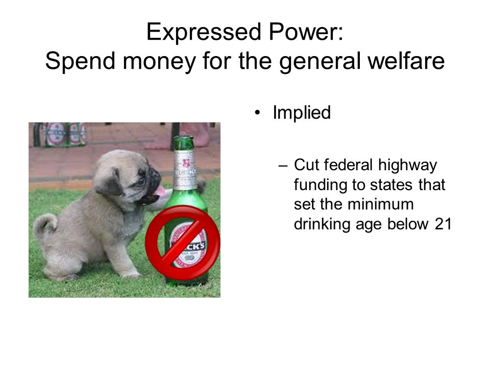 Expressed Power: Spend money for the general welfare