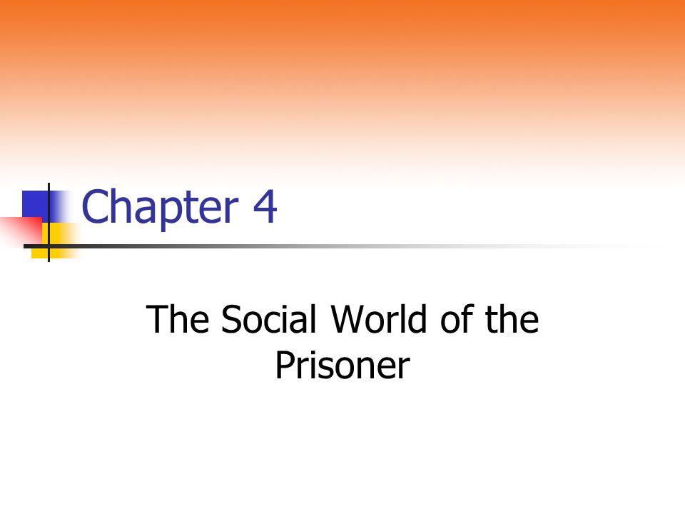 The Social World of the Prisoner