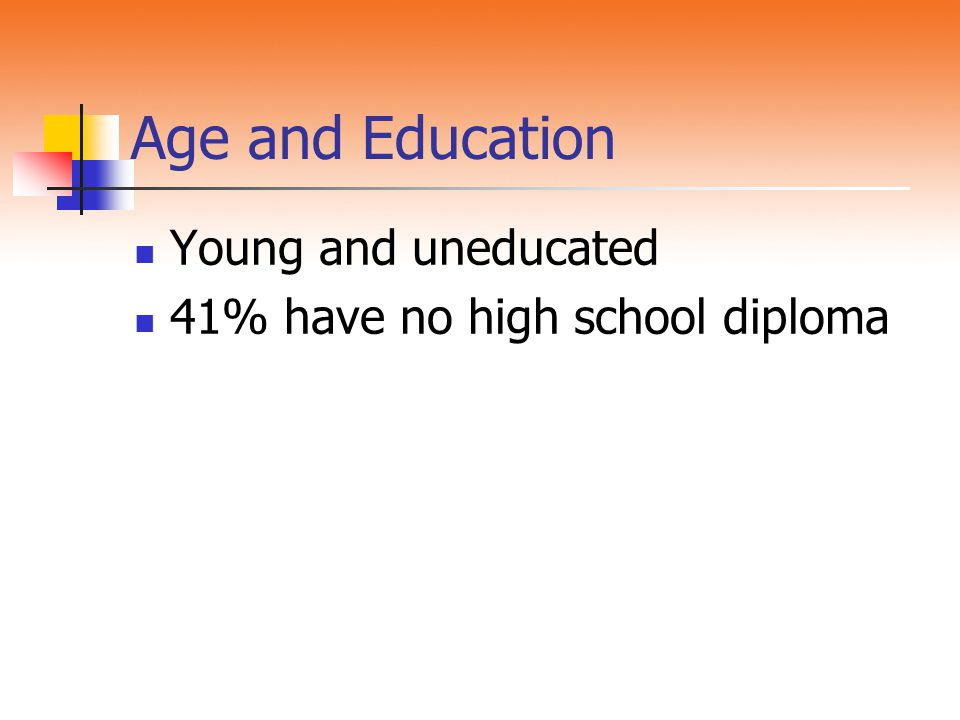 Age and Education Young and uneducated 41% have no high school diploma