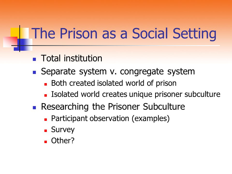 The Prison as a Social Setting