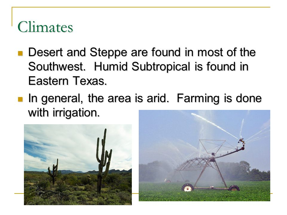 Climates Desert and Steppe are found in most of the Southwest. Humid Subtropical is found in Eastern Texas.