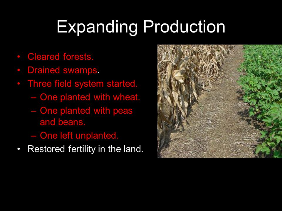 Expanding Production Cleared forests. Drained swamps.