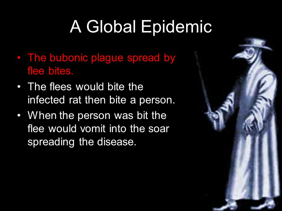 A Global Epidemic The bubonic plague spread by flee bites.