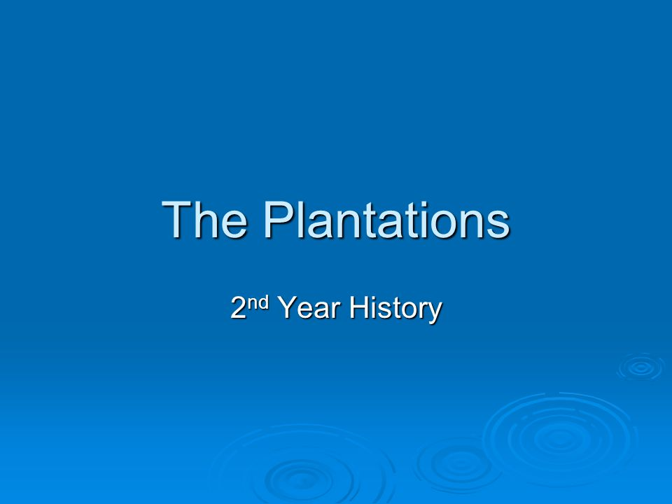 The Plantations 2nd Year History