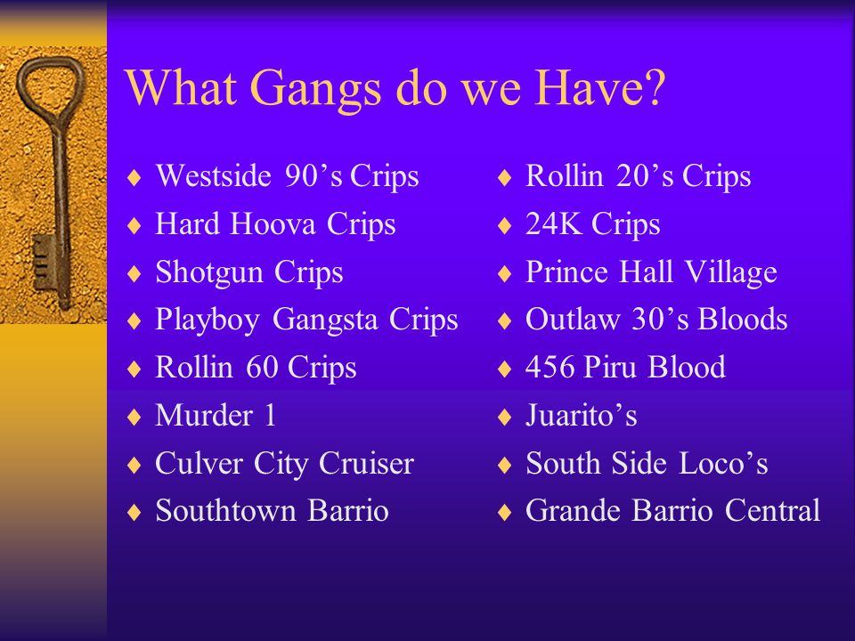 What Gangs do we Have Westside 90's Crips Hard Hoova Crips