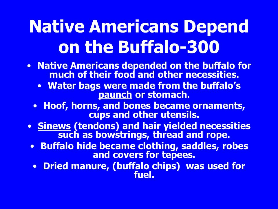 Native Americans Depend on the Buffalo-300