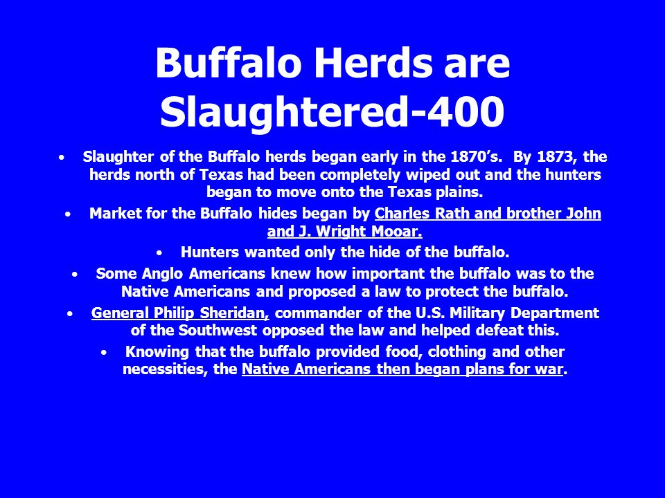 Buffalo Herds are Slaughtered-400