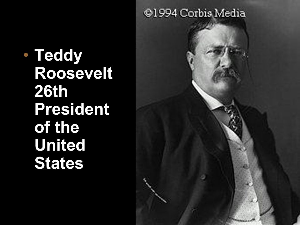 Teddy Roosevelt 26th President of the United States
