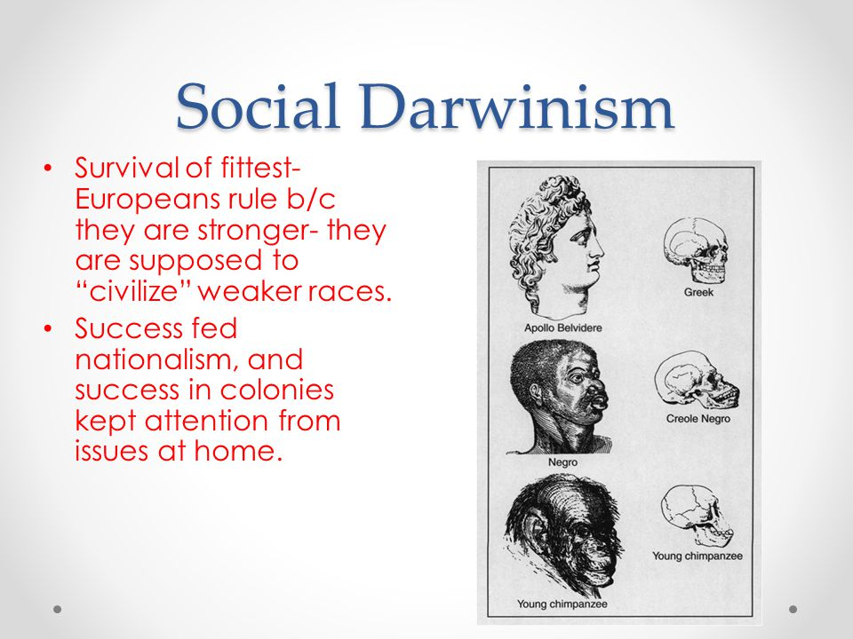 Social Darwinism Survival of fittest- Europeans rule b/c they are stronger- they are supposed to civilize weaker races.